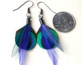 Purple Peacock Dream Earrings- Small Peacock Eye Earrings