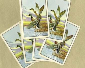 Vintage Flying Mallard Playing Cards for ATCs, Collage, Scrapbooking, Paper Arts, Assemblage and MORE PSS 1886