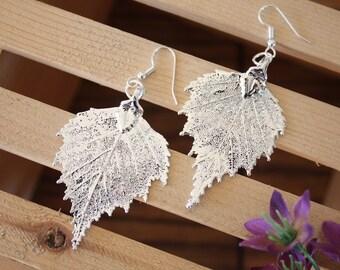 Silver Leaf Earrings, Birch Leaf, Real Leaf Earrings, Real Birch Leaf, Sterling Silver, Nature, Medium Sized, LEP41