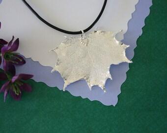 Silver Maple Leaf, Real Leaf, Sugar Maple, Maple Leaf, Sterling SIlver, PL11
