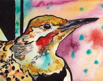 Alabama's State Bird - Print of Original Watercolor Painting of the Northern Flicker - Bird Wall Art by Jen Tracy