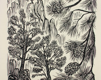 Pinyon Pine Tree Original Woodblock Print Forest Mountain Landscape Very Limited Artist Proof Edition