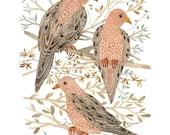 mourning doves bird art print