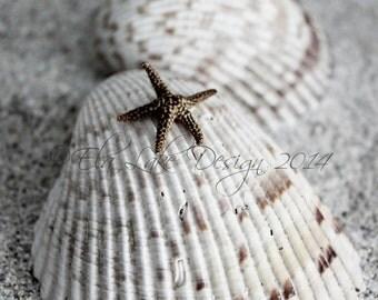Starfish Fine Art Photo,  Beach House Decor, Beach Baby Nursery , Coastal Cottage Print , original photography