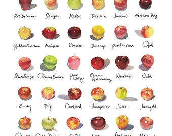 "20""x20"" Apple-a-Day Compilation Watercolor Print"