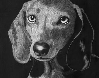 Custom scratchboard pet portraits