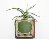 YouTube Bud Vase   iphone smartphone app icon   airplant flower succulent bud pen pencil holder   olive green brown   magnet   in stock