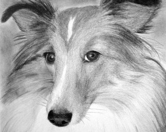 Custom Pet Portrait From Your Photo - 11x14 Original Personalized Pencil Sketch Drawing From Picture