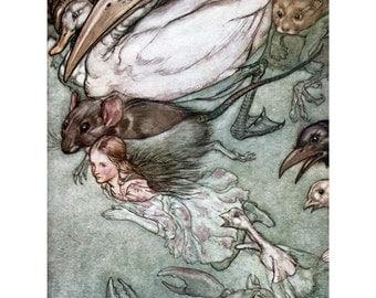 Alice in Wonderland Greeting Card - Pool of Tears - Arthur Rackham