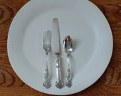 Silver Youth Dinner Set