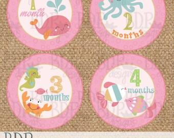 "Under the Sea Monthly Onesize Baby Stickers - 4"" diameter OR Onesie Gift Set"
