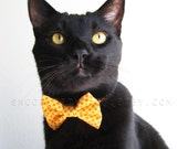 Cat Bow Tie - Clown College - Halloween Cat Accessory