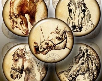 "Vintage Horses I - 1.5"", 1.25"", 30mm, 25mm, 1"" circles - Digital Collage Sheets CG-249a for  pendants, cabochons, bottle caps, crafts"
