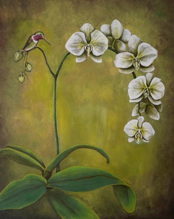 "White Orchid Hummingbird Painting 11x14"" print"