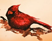 "CARDINAL in the COLD   this is a big handsome watercolor for your home, office  18""x 23"", ready for your mat and frame"