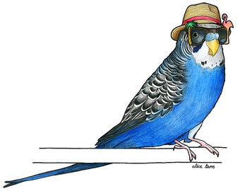 Budgie in a Trilby - A4 Print