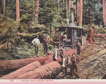 "Ca. 1912 ""Donkey Engine"" in Virgin Forest Topographical Picture Postcard - 820"