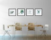Food Photography - Kitchen Art - Herbs - Set of Four (4) Herb Photos - Fine Art Photography Prints - Kitchen/Dining Room Decor
