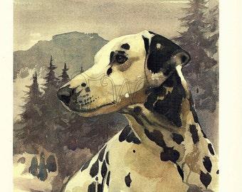 Dog Print,  DALMATIAN, Puppy Print, Art Print, Home Decor, Book Plate, Illustration, Wall Decor, Interior Design, A-13