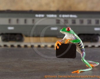 Traveling Frog, Commuting. A LIVE frog and Lionel Train, Commuter