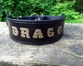 Large Dog Collar, Engraved Dog Collar, Gold Name Dog Collar, Personalized Dog Collar