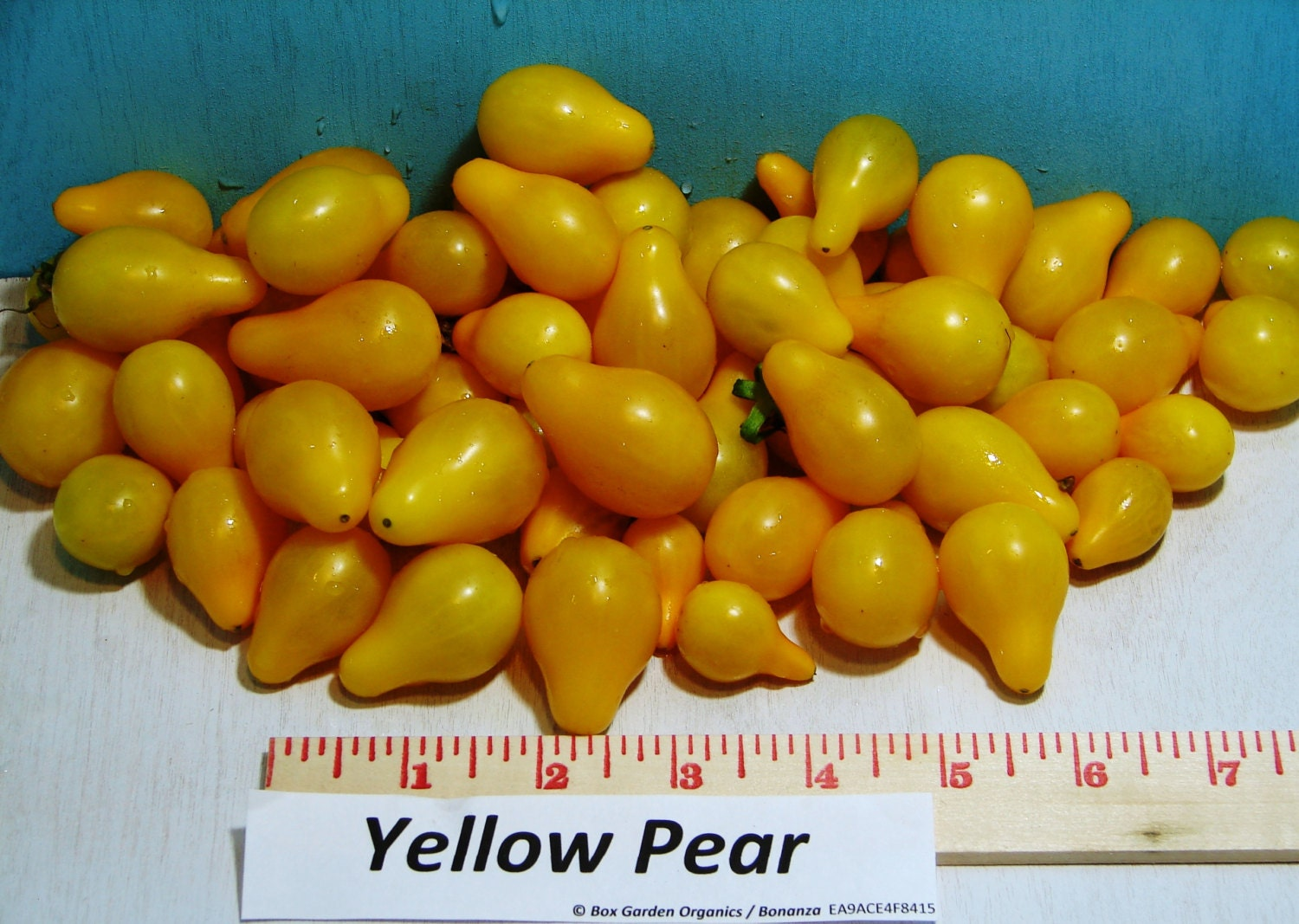 Yellow Pear Heirloom Tomato Seeds Non GMO