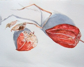 Chinese Lantern painting. Watercolor art original. Watercolor painting. Kitchen decor. Home decor in red, orange. Small watercolors.