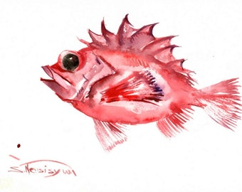 REDFISH, original watercolor painting, 9 X 12 in, seafish, seafood, sea animals, fish lover, red white kitchen art