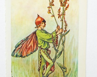 Sorrel Fairy, Flower Fairy, Flower Fairies of the Wayside Picture, Cicely Mary Barker Print, Fairy picture