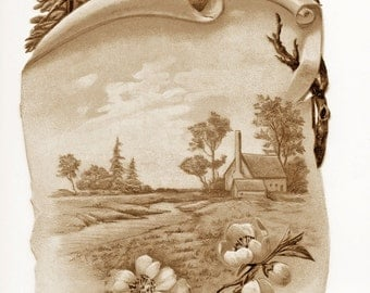 Antique SEPIA Greeting Card ROBINS on Scroll withCHERRY Blossoms and farm scene -  Instant Digital download