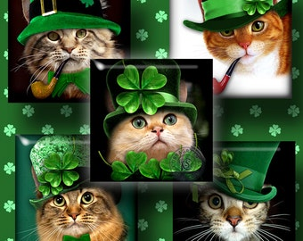 St. Patrick's Cat - 1x1 inch and scrabble tiles - Printable Digital Collage Sheet CG-630S for Jewelry Making, Scrapbooking, Crafts