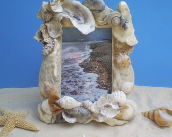 Unique Seashell Frame, 10 X 7, Many Varigated shell colors, Seashell Art at its best