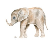 Animal Watercolor Painting Elephant Watercolor Animal Art