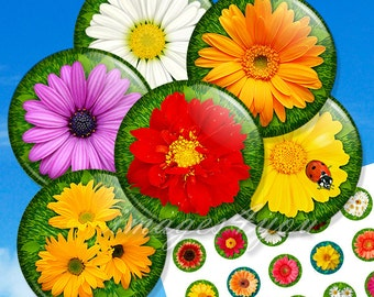 """Spring Flower 1 inch circles Digital Collage Sheet cabochon download printable round 1"""" bottle cap images for pendants 30mm 25mm 1.25"""", 1.5"""""""