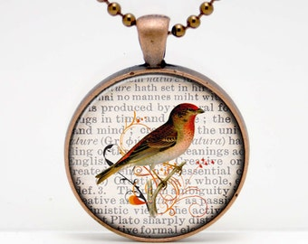 Bird on a Dictionary Page Background Art  Glass Pendant or Key Chain - 30 mm round- Chain Included- Made to Order