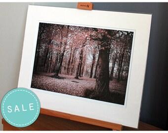 SALE Autumn woodland mounted infrared photograph, fine art photo print, landscape, nature, trees, England, UK