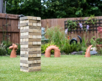 Brick Stacking Game. Two-tone Bricks. Great for the Garden in the Summer.
