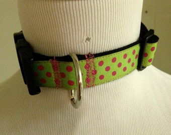 Lime Green and Pink Polka Dot Collar