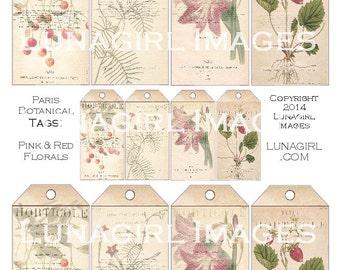 PARIS BOTANICAL TAGS digital collage sheet Download vintage images pink flowers red fruit floral Victorian art shabby ephemera printables
