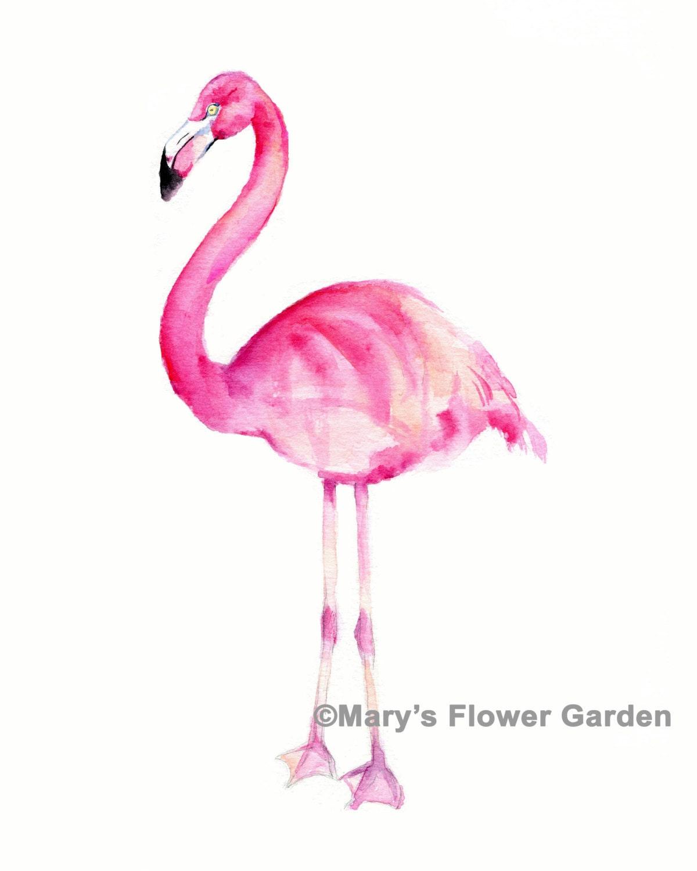 Flamingo art flamingo watercolor flamingo art print pink for Flamingo feather paint