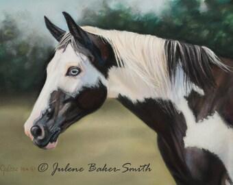 Black and White Horse Art - Paint Horse Art - Pinto Horse Art - Horse Lover Gift