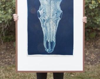Original Cyanotype print Sunprint Sun Print of drawing large a2 poster a3 poster