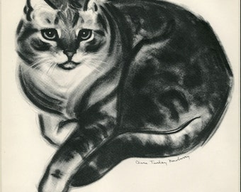 Large Vintage Cat Print C.1944 Clare Turlay Newberry Grey Tabby Matted 12x16""