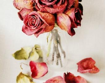 Still Life Photography - Vase of Roses Fine Art Photograph - Romantic Decor - Red Rose Print - 8x12