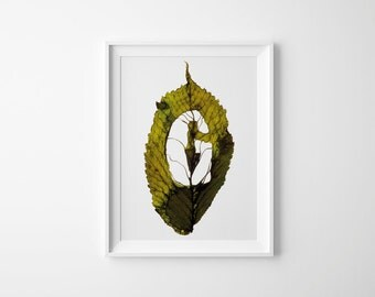 Monogram Letter G – Fall Leaf – Nature Wall Art – Initial Wall Print – Birthday Gift – Letter G Print – 21 x 30 cm or 30 x 40 cm