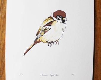 Limited edition house sparrow bird screenprint