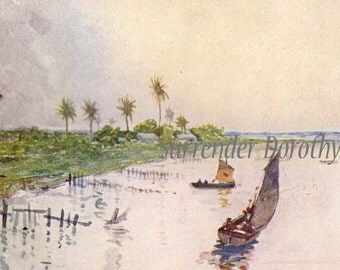 Tropical Scene On The Parana River A S Forrest 1910 Original Vintage Edwardian Watercolor Lithograph To Frame