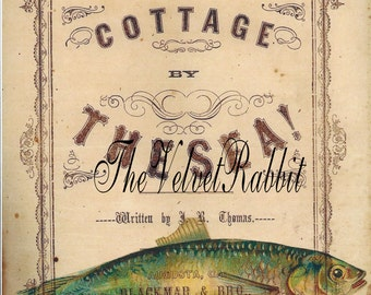 Digital download instant.*FISH*Cottage by the Sea*300 dpi* decoupage, collage,sewing.ornaments*Frame