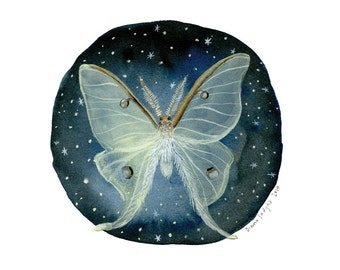Luna Moth - 10 x 10 inch Glow-in-the-Dark Archival Inkjet (Giclée) Print