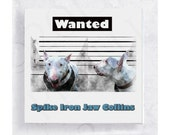 Dog Art - Bull Terrier Dog Wanted Poster - Canvas Print on 5x5 Art Block - Animal Portrait - Whimsical Art - Spike Iron Jaw Collins